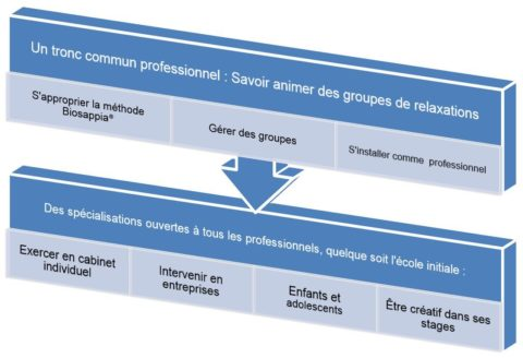 Permalink to:Notre formation professionnelle en gestion du stress, en images